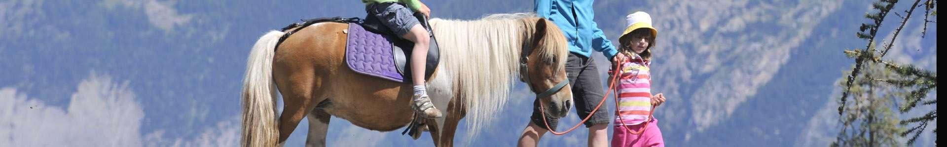 equitation-362