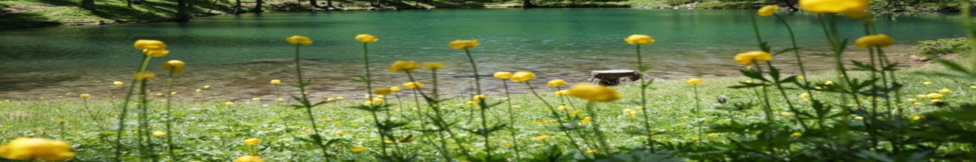 risoul-paysages-ete-lac-pre-du-laus1-2779