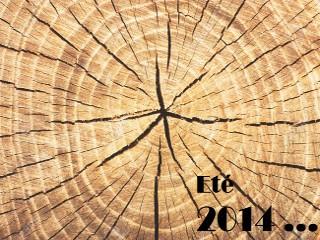 Été 2014