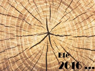 Été 2016