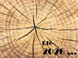 Eté 2020