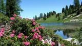 randonnee_lac_de_montagne_montagne_liberte.jpg