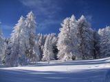 risoul-ecoles-de-ski-esf1-1422