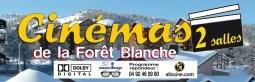 cinema_de_la_foret_blanche.jpg