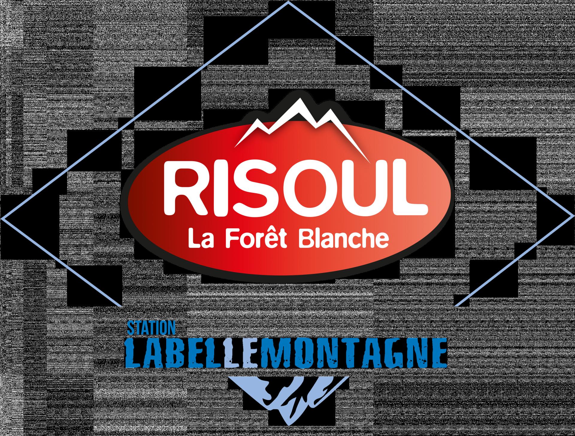 logo-domaine-skiable-risoul-10844