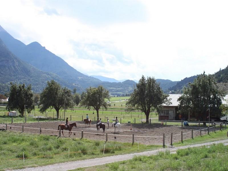Site rencontre milieu equestre