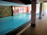 risoul-hbergement-lopez-antares610-piscine-18327