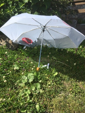 parapluie-risoul-15487