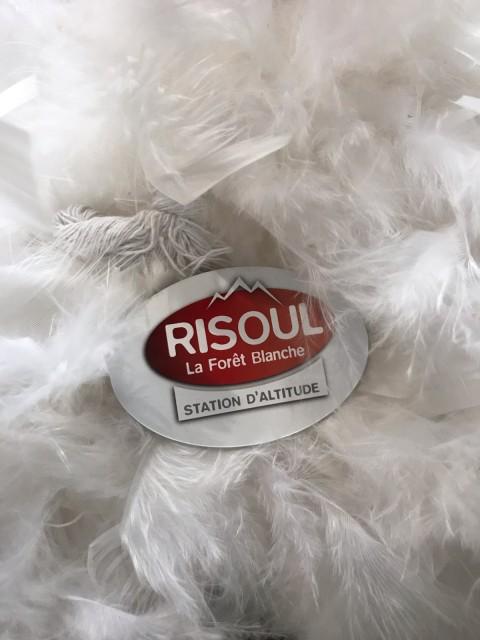 magnet-risoul-280094